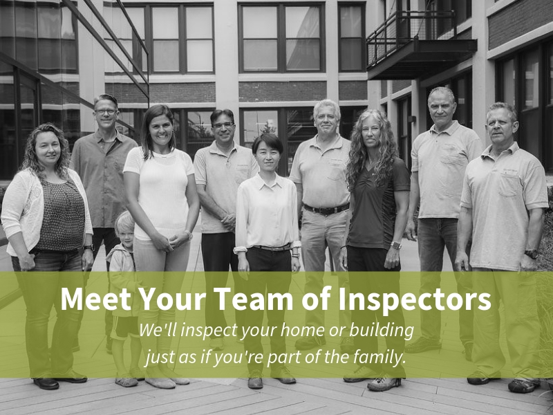 Domicile Consulting Home Inspector Team